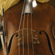 Stock Photo: Mwith double bass instrument