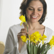 Woman arranging daffodils in a vase — Stock Photo