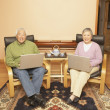 Senior Asian couple having tea while using laptops - Stock Photo
