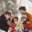 Stock Photo: Family with star and snowy tree in forest