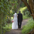 Newlyweds walking along dirt path - Foto Stock