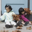 Girls collecting fall leaves — Stock Photo #13227518