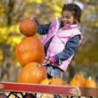 African girl trying to stack pumpkins - Stock Photo