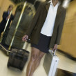 Businesswomwith luggage — Stockfoto #13228304