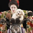 Asian woman in ethnic clothes driving a motorcycle with a dog - Stock Photo