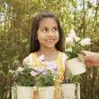 Stock Photo: Hispanic girl holding potted flowers outdoors