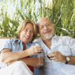 Senior Hispanic couple drinking wine — Stock Photo #13229586