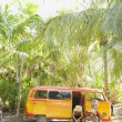 Sitting with van in tropical setting - Stock Photo