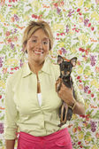 Portrait of woman with pet Chihuahua — Stock Photo