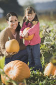 Hispanic mother and daughter in pumpkin patch — Stockfoto