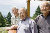 Porträtt av tre äldre män som står utanför — Stockfoto
