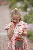 Young girl eating strawberry from pail outdoors — Stok fotoğraf