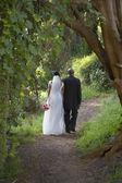 Newlyweds walking along dirt path — Stock Photo
