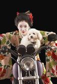 Asiatisk kvinna i etniska kläder kör en motorcykel med en hund — Stockfoto