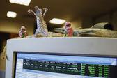 Toys adorning computer screen — Stock Photo