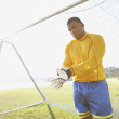 Stok fotoğraf: Goalie putting on glove
