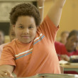 Young boy raising his hand in classroom — Foto Stock