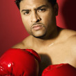 Stock Photo: Male boxer posing
