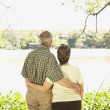 Rear view of senior Hispanic couple hugging outdoors - Stock Photo