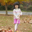 Young Asian girl raking leaves - Stock Photo