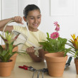 Hispanic girl watering potted plant indoors — Foto de Stock