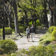 Asian couple walking and holding hands in park — Stock Photo
