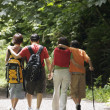 Stock Photo: Rear view of family hiking