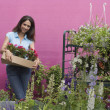 Hispanic woman carrying plants at florist shop - Stock Photo