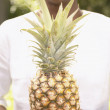 Stock Photo: Midsection of womholding pineapple