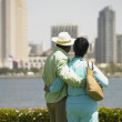 Senior couple looking at cityscape across water — Stock Photo