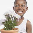 Studio shot of young African boy holding a potted plant — Stock Photo #13233367
