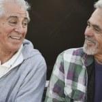 Two senior men laughing and talking — Stock Photo #13235003