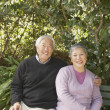 Stock Photo: Senior Asicouple sitting on park bench hugging