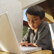 Stock Photo: Boy working on computer