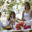 South American couples toasting with wine — Stock Photo