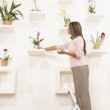 Businesswoman putting potted flowers on their shelf — Stock Photo