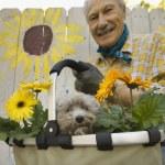Senior man holding gardening basket with flowers and dog — Stock Photo