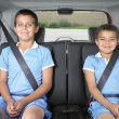 Stock Photo: Portrait of brothers wearing seatbelts