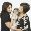 Studio shot of Asian mother and adult daughter with Shih-Tzu - Stock Photo