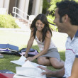 Students reading on the grass — Stock Photo