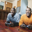 Stock Photo: Brothers playing video game