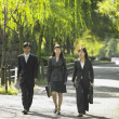 Stock Photo: Businessman and businesswomen walking