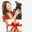 Asian woman lifting dog out of gift box — Stock Photo
