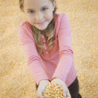 Young girl holding handful of corn - Stock Photo