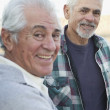 Stock Photo: Two senior men smiling outdoors