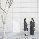 Businesswomen shaking hands — Stock Photo