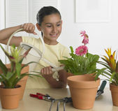 Hispanic girl watering potted plant indoors — Stock Photo