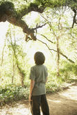Hispanic boy looking at tree in woods — Stock Photo