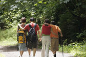 Rear view of family hiking — Stock Photo