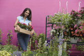 Hispanic woman carrying plants at florist shop — Stock Photo